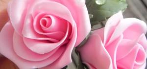 rose-per-mamma